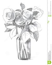 pencil sketch rose in vase royalty free stock image image 18863346