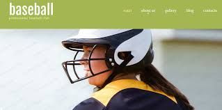 11 baseball website themes u0026 templates free u0026 premium templates