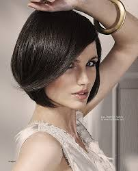 just below the chin length bob haircut bob hairstyle flapper bob hairstyle beautiful smooth bob with a