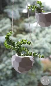 121 best hangtuintjes images on pinterest hanging plants