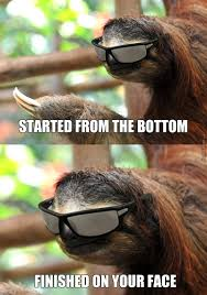 Your Face Meme - sloth rape meme started from the bottom finished on your face