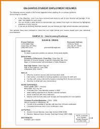 Resume Activities Section 6 Resume Objective Section Affidavit Letter Example Peppapp