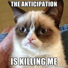 Sophisticated Cat Meme Generator - the anticipation is killing me grumpy cat meme generator
