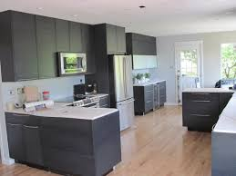 Matte Black Kitchen Cabinets Homeofficedecoration Flat Black Kitchen Cabinets