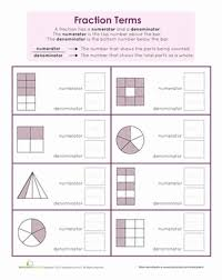 numerator and denominator basic fraction terms worksheet