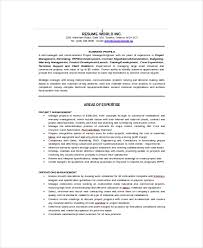 It Director Resume Sample by It Resume Template 6 Free Word Excel Pdf Documents Download