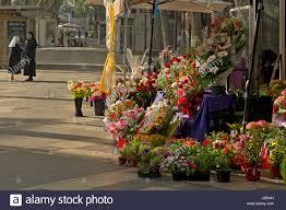 100 Flower Shops In Santa 100 Flower Shops In Valencia Ca Valencia Ca Usa September 8