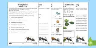 237 best english year 3 and year 4 images on pinterest student