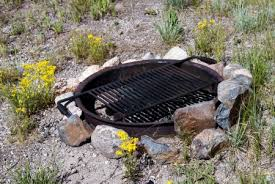 Grill For Fire Pit by Fire Pit Cooking How To Tips The Blog At Fireplacemall