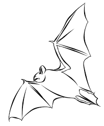 bat coloring pages coloring pages print