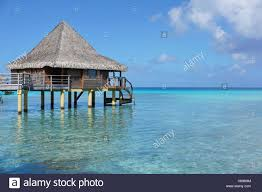 overwater bungalow with thatched roof in the lagoon of rangiroa