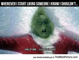 Grinch Meme - liking someone i know i shouldn t humor grinch memes and memes