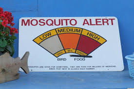get rid of mosquitoes safely u0026 without resorting to smelly bug