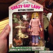 Funny Cat Lady Memes - crazy cat lady memecommunity com