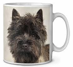 brindle cairn terrier dog coffee tea mug christmas stocking filler