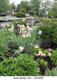 Williamstown Botanic Gardens Williamstown Garden Club Maintains Flower Gardens For The