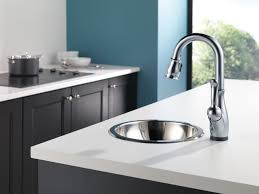 Delta Leland Kitchen Faucet Reviews by Foundations Kitchen Collection