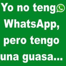 imagenes para perfil de whatsapp animadas te muestro 5 fotos para perfil de whatsapp gratis para bajar