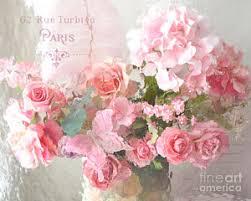 Shabby Chic Rose by Shabby Chic Roses Prints Fine Art America