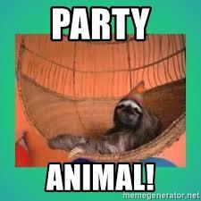 Sloth Meme Maker - party animal party sloth meme generator