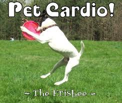 warren eckstein u0026 the pet show home of dog u0026 cat vitamins