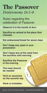 81 best bible pentateuch images on bible scriptures