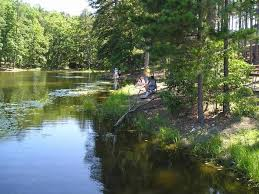 Twin Pines Landscaping get a taste for fishing at twin pines family fishing day may 6