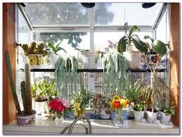 glass shelf between kitchen cabinets glass shelves for kitchen window home car window