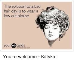Bad Hair Day Meme - the solution to a bad hair day is to wear a low cut blouse your