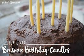 Make Candles How To Make Beeswax Birthday Candles Whole Fed Homestead