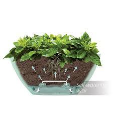 amazon com santino self watering planter calipso oval shape l