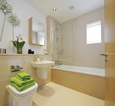 show homes bathrooms home design