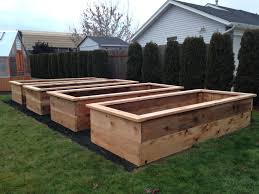 raised garden beds for sale garden boxes for sale home outdoor decoration