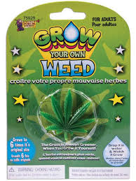 diy grow your own weed novelty funny secret santa grow birthday