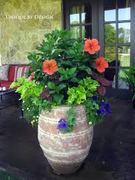 Container Flower Gardening Ideas Neoteric Large Container Gardens Modern Decoration 17 Best Ideas