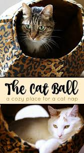120 best the cat ball press collection images on pinterest cat