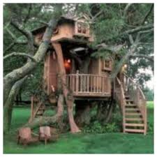 best tree houses awesome tree house house pinterest awesome tree houses