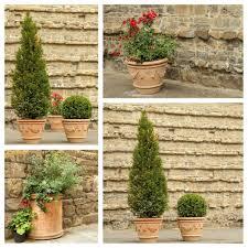 terracotta pots terracotta pots with plants u2014 stock photo malgorzata kistryn