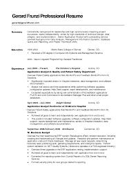 sample it professional resume example of resume summary