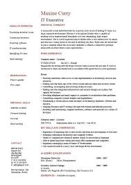 it manager resume exles it executive resume exle sle technology technical skills