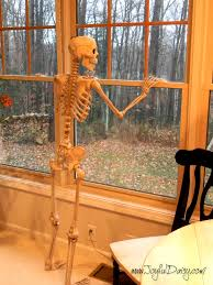 Halloween Decorations Skeletons Climbing House by Indoor U0026 Outdoor Halloween Skeleton Decorations Ideas
