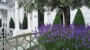 the secret chelsea garden