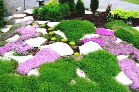 Backyard Simple Landscaping Ideas Landscape Simple Landscaping Ideas Using Mulch For Country Home