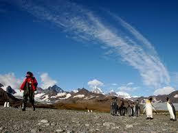 Georgia travel quest images Falklands south georgia and antarctica via ushuaia 20 days sea jpg