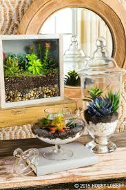 Indoor Plants Arrangement Ideas by 264 Best Terrariums Images On Pinterest Terrarium Ideas Plants