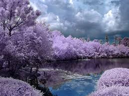 beautiful pictures of spring season funawake com