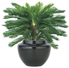 artificial plants exterior plants image gallery outdoor artificial flowers