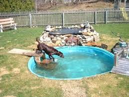 Landscaping Ideas For Backyard With Dogs Backyard Diy Ideas U2013 Mobiledave Me