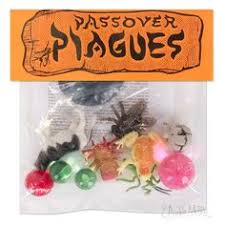 passover plagues bag passover seder chocolate gift plagues marshmallow frog and