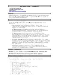 Example Of A College Resume by Ankit Seo Resume